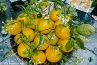 Hàng bưởi Diễn da vàng óng có từng búi hoa tươi giá tận 100k/quả, bà chủ thu cả chục triệu mỗi ngày!
