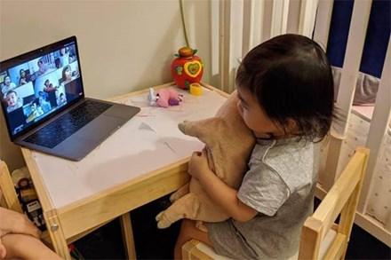 Dở khóc dở cười câu chuyện học online ở cấp mầm non