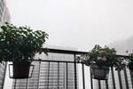 Dự báo thời tiết 2/3, miền Bắc mưa giông-2