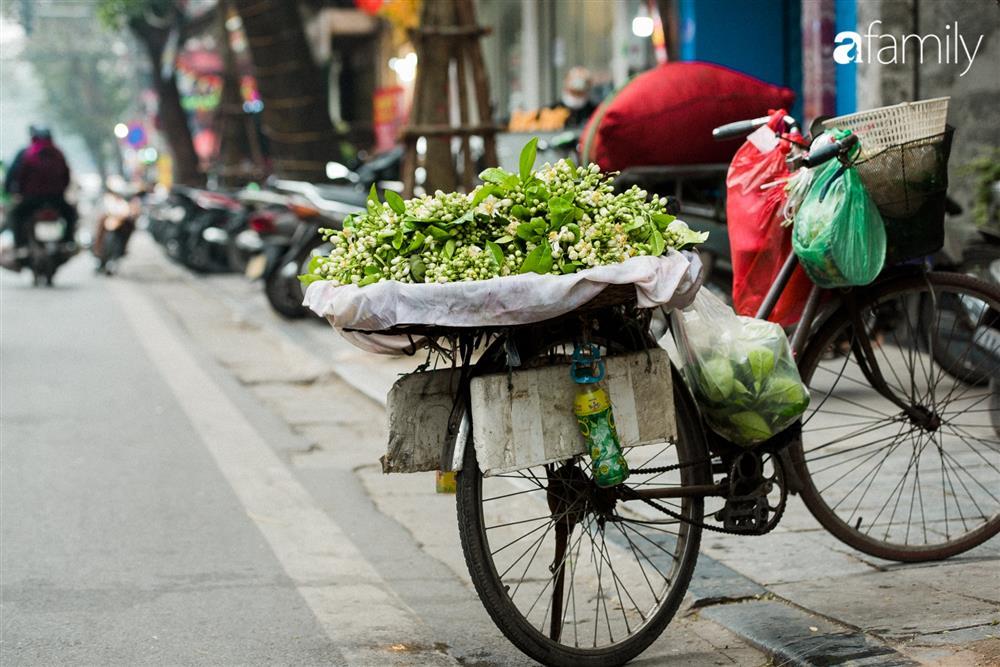 Vào mùa hoa bưởi thơm ngào ngạt, giá từ 200.000/kg và cách lựa hoa chuẩn chỉnh-1