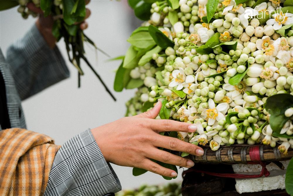 Vào mùa hoa bưởi thơm ngào ngạt, giá từ 200.000/kg và cách lựa hoa chuẩn chỉnh-2