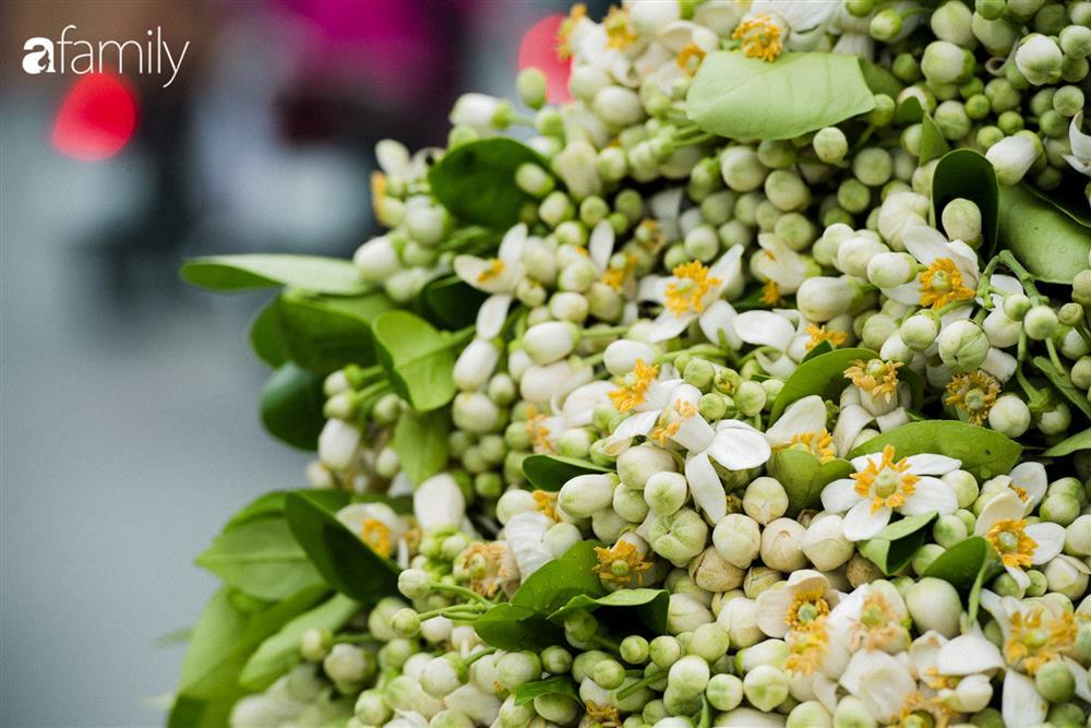 Vào mùa hoa bưởi thơm ngào ngạt, giá từ 200.000/kg và cách lựa hoa chuẩn chỉnh-3