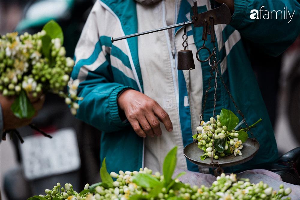 Vào mùa hoa bưởi thơm ngào ngạt, giá từ 200.000/kg và cách lựa hoa chuẩn chỉnh-4
