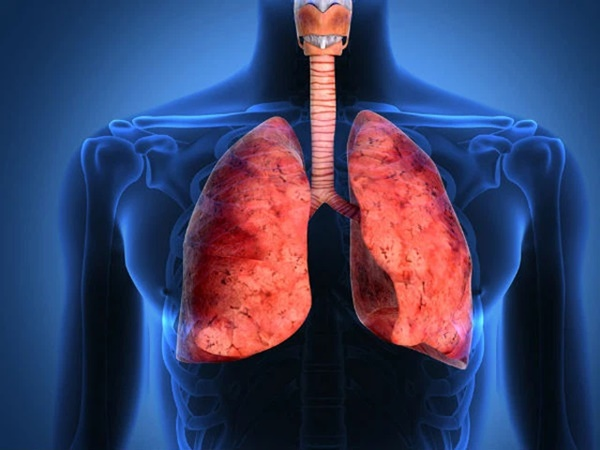 Phổi là chiếc máy hút bụi của cơ thể: BS mách bạn cách làm sạch mỗi ngày để không bị bệnh-1