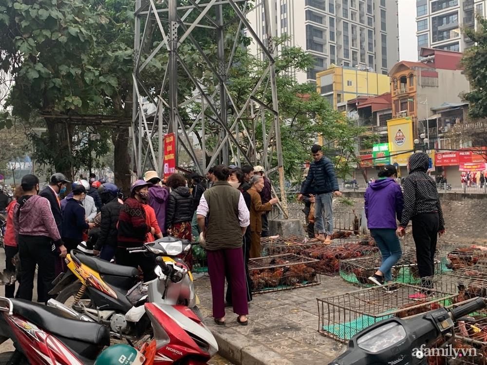 Người dân Hà Nội xếp hàng mua gà giải cứu 60k/kg, thị trường online thêm tấp nập với cam Hà Giang 7k/kg-2