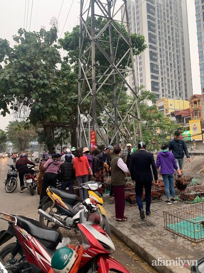 Người dân Hà Nội xếp hàng mua gà giải cứu 60k/kg, thị trường online thêm tấp nập với cam Hà Giang 7k/kg-4