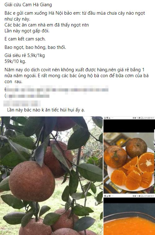 Người dân Hà Nội xếp hàng mua gà giải cứu 60k/kg, thị trường online thêm tấp nập với cam Hà Giang 7k/kg-6