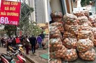 Người dân Hà Nội xếp hàng mua gà 'giải cứu' 60k/kg, thị trường online thêm tấp nập với cam Hà Giang 7k/kg