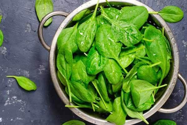 Một số chất có lợi cho sức khỏe nhưng lại cũng là chất kháng dinh dưỡng: Làm thế nào để tránh ảnh hưởng của chúng?-3