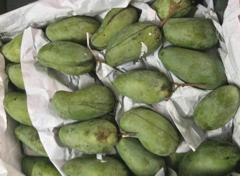 Trái cây dội chợ giá rẻ hơn rau, bán cả chục tấn/ngày-2