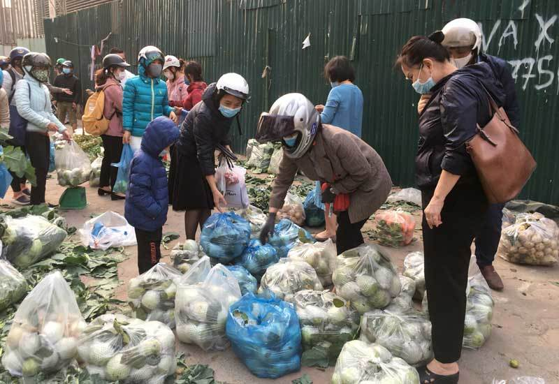 Trái cây dội chợ giá rẻ hơn rau, bán cả chục tấn/ngày-3