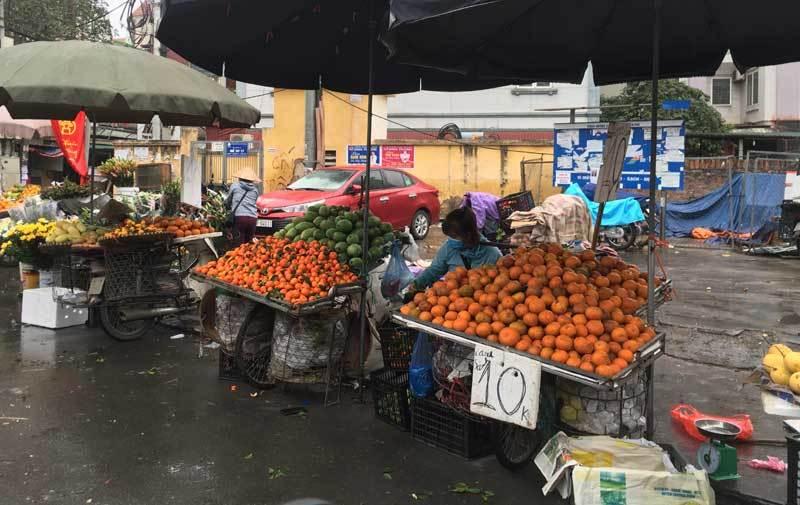 Trái cây dội chợ giá rẻ hơn rau, bán cả chục tấn/ngày-1