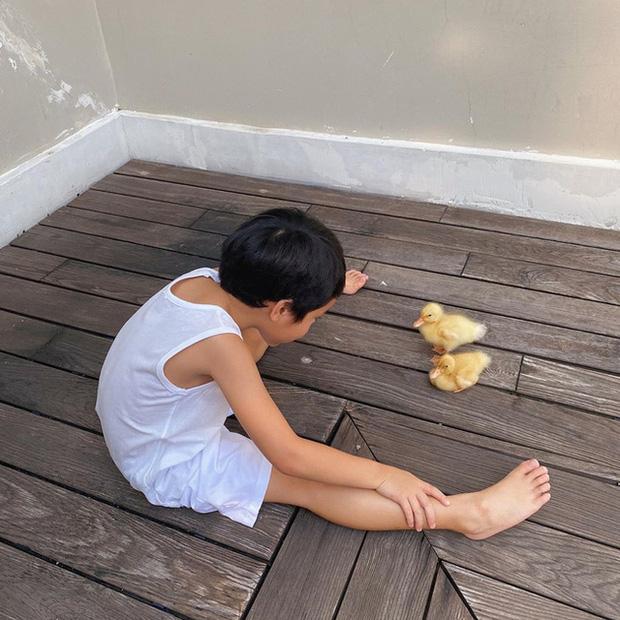 """Tại sao Hà Tăng gọi quý tử là chàng trai có 1-0-2 của mẹ""""? Xem cuộc sống của cậu bé sau cánh cửa hào môn là đủ hiểu!-6"""