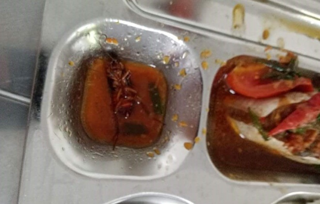 Học sinh ở TP.HCM phát hiện có gián trong suất ăn 27.000 đồng-1