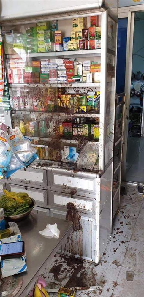 Nữ chủ tiệm thuốc tây bị khủng bố bằng sơn, mắm tôm vì em trai mượn tiền giang hồ không trả-2
