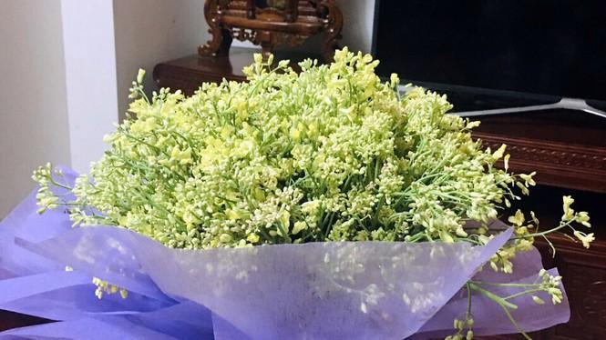Xót xa cảnh súp lơ ở Hải Dương nở hoa vàng cả cánh đồng-4