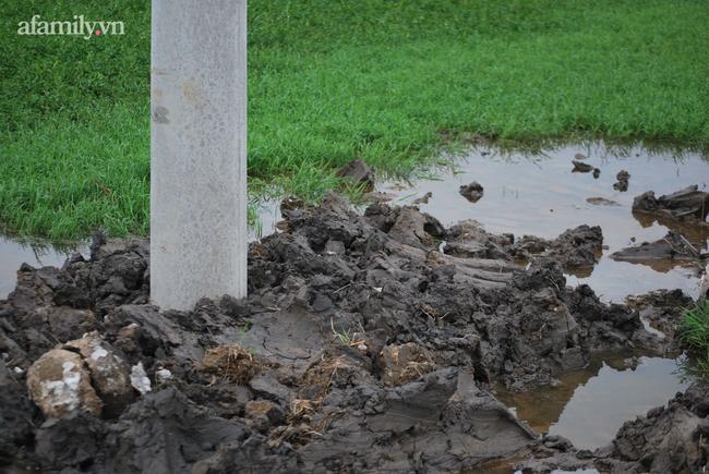 Đau xót vụ 2 anh em ruột tử vong dưới hố chôn cột điện ở Thanh Hóa: 2 đứa con duy nhất của cặp vợ chồng trẻ, điện lực nhận trách nhiệm-6