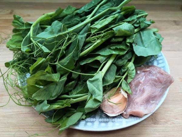 Tháng 3, loại rau mầm này là báu vật, mang đi nấu canh thì nước ngọt vô cùng, lại bổ và cực tốn cơm-4