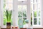 Mẹo làm mát nhà cửa mà không tốn quá nhiều điện năng