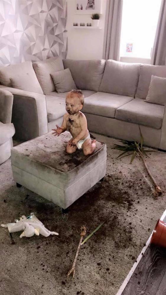 Nghe bà mẹ kể tội con trai: Đập vỡ sương sương 12 cái tivi, nửa đêm không ngủ dậy sơn khắp nhà, ai cũng cười ngặt nghẽo con mình vẫn còn hiền chán-8