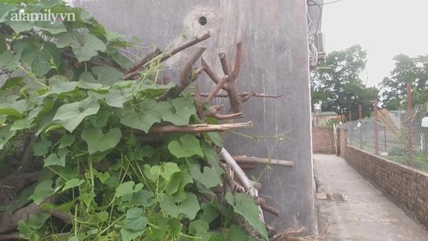 Vụ sát hại vợ con ngay trước ngày 8/3 ở Hà Nội: Chiều hôm trước chồng còn chở vợ đi mua hoa-2