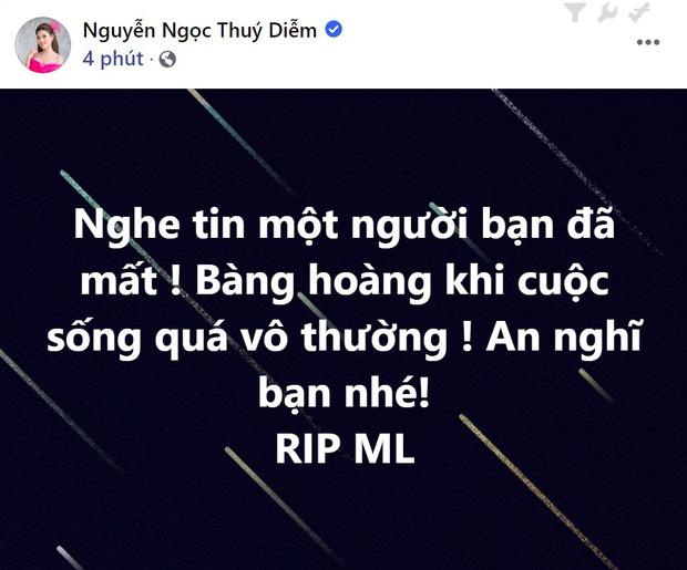 Phù thuỷ trang điểm cho Hoa hậu Đặng Thu Thảo và Nhã Phương, đột ngột qua đời, Mai Phương Thúy cùng dàn sao Việt bàng hoàng-9