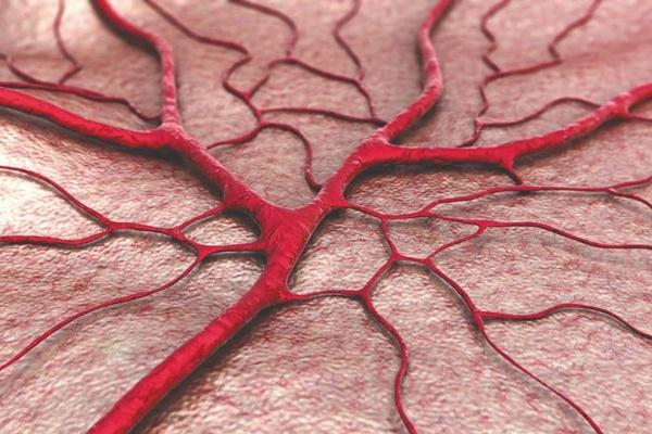 4 món ăn được giới chuyên gia mệnh danh là sát thủ phá hủy mạch máu, đặc biệt món thứ 3 đã được WHO cảnh báo nguy hiểm từ lâu-1