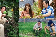 Khu vườn rau củ quả trong nhà thờ Tổ của NSƯT Hoài Linh