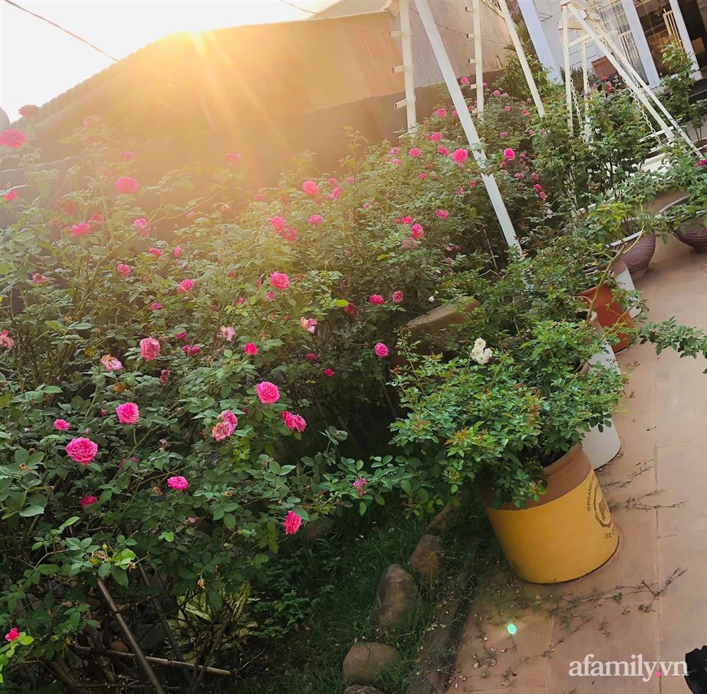 Bận rộn chăm sóc 3 con, bà mẹ đảm vẫn một tay thiết kế khu vườn đầy hoa đẹp như mơ ở Đắk Nông-10