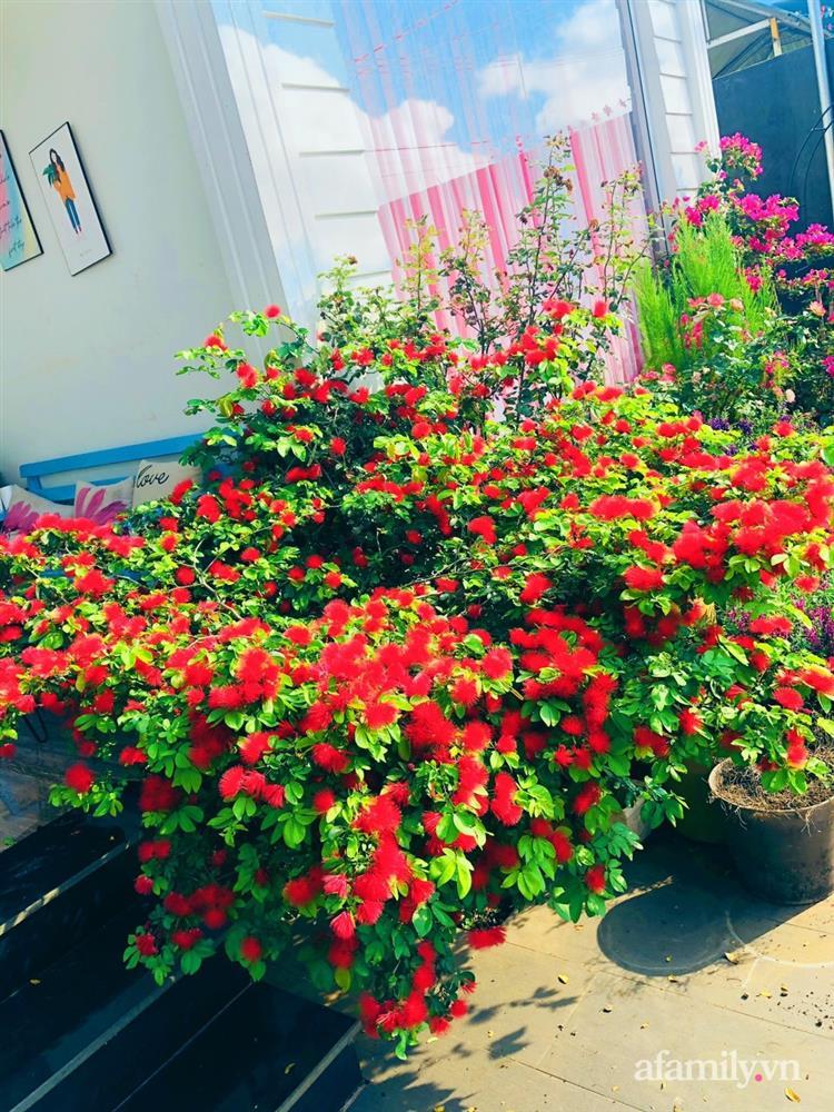 Bận rộn chăm sóc 3 con, bà mẹ đảm vẫn một tay thiết kế khu vườn đầy hoa đẹp như mơ ở Đắk Nông-24