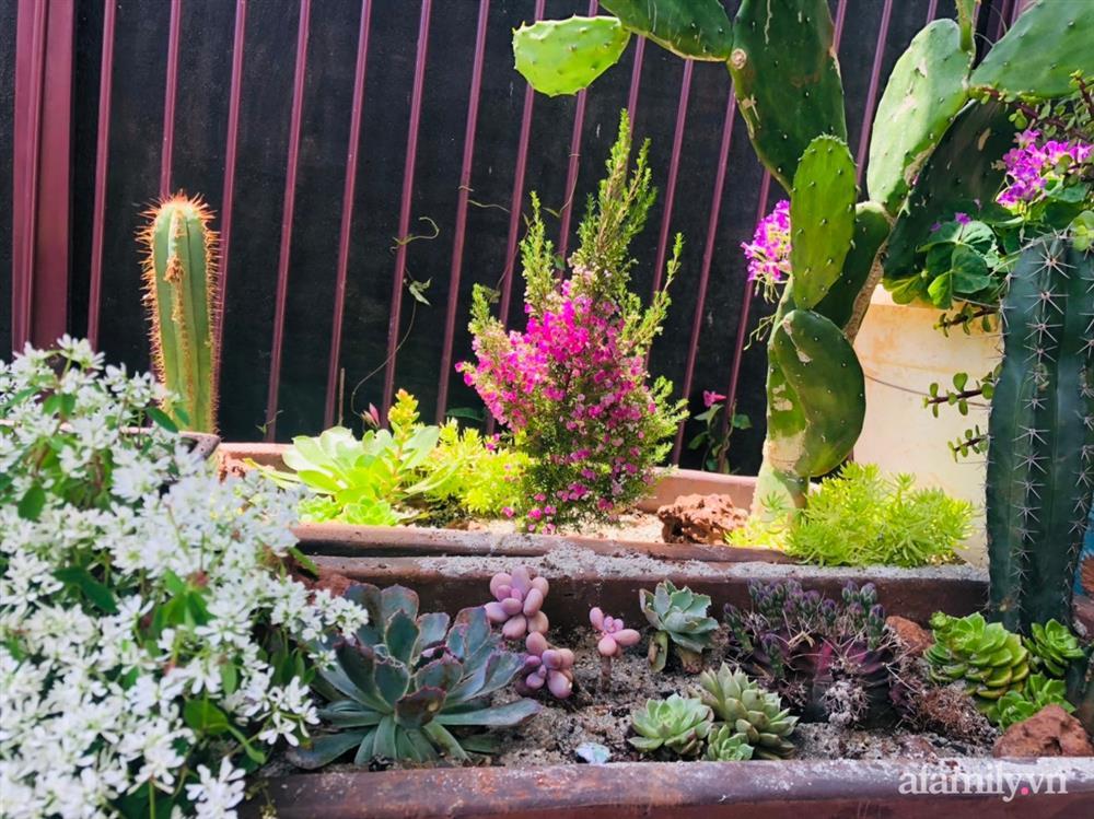 Bận rộn chăm sóc 3 con, bà mẹ đảm vẫn một tay thiết kế khu vườn đầy hoa đẹp như mơ ở Đắk Nông-27