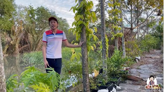Hoài Linh khoe cây 8 tỷ ra quả, tiết lộ điều bất ngờ về mình năm mười mấy tuổi-3