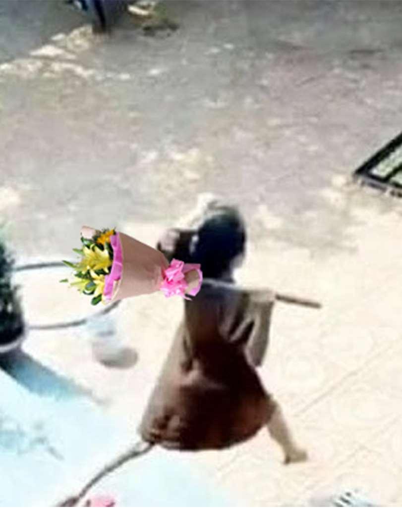 Dân mạng chế ảnh mẹ bầu vác rựa giúp chồng đuổi trộm: Nóc nhà này quá chất lượng-2