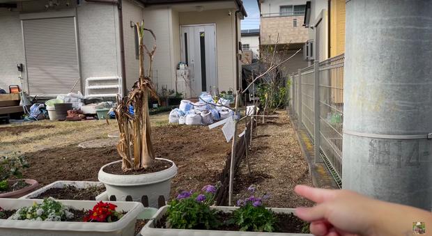 Quỳnh Trần JP bất ngờ đăng clip tố hàng xóm người Nhật kỳ thị, bị ghét từ khi mới dọn về khiến nhiều người bức xúc-1