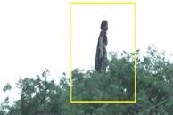 Đoạn clip bóng dáng người phụ nữ đứng nhảy nhót trên cây kèm câu chuyện rùng rợn 'gây bão' MXH, sự thật còn khó tin hơn