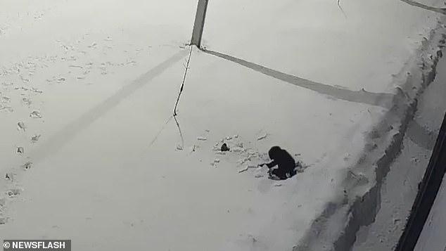 Bé trai 5 tuổi rơi từ tầng 12 xuống đất nằm bất động, chỉ 5 giây sau điều kỳ diệu đã xảy ra khiến mọi người không tin vào mắt mình-3