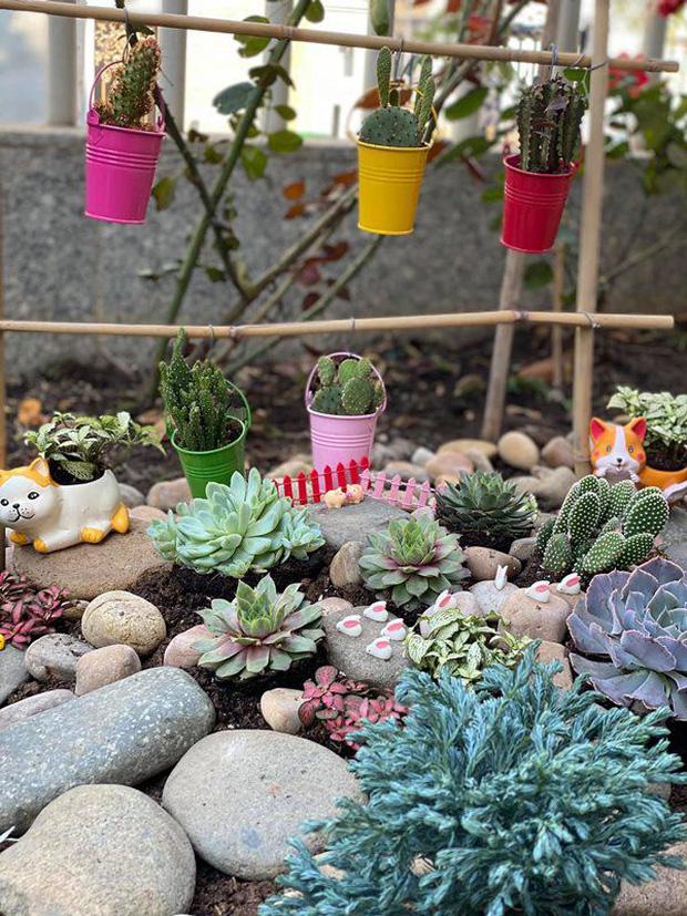 Biệt thự của Quý Bình và bà xã doanh nhân: Hoa phủ kín lối đi, mảnh vườn lớn là ao ước của nhiều người-12