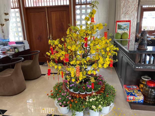 Biệt thự của Quý Bình và bà xã doanh nhân: Hoa phủ kín lối đi, mảnh vườn lớn là ao ước của nhiều người-14
