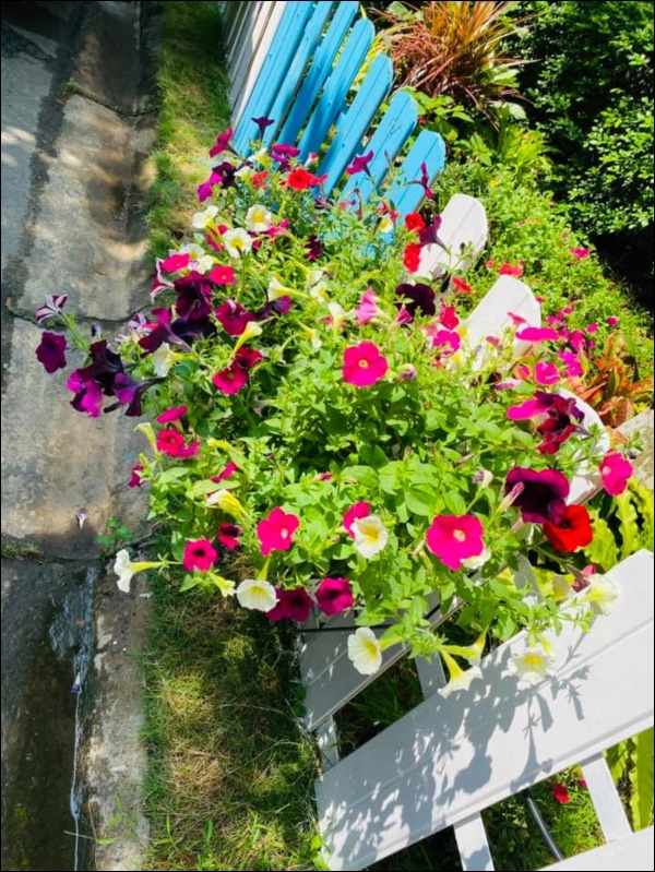 Biệt thự triệu đô của Vy Oanh và chồng đại gia hoa tươi nở bốn mùa, cây trái sai trĩu quả-11