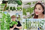 Độc đáo 3 vườn rau sạch trên sân thượng biệt thự của sao Việt