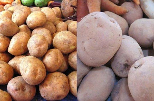Người bán rau củ không bao hé răng cho bạn biết: 3 giây để phân biệt hàng Việt Nam - Trung Quốc-2