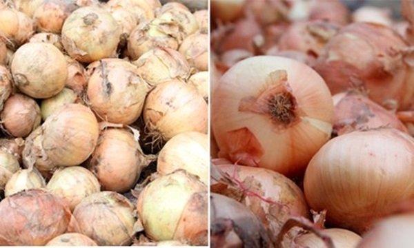 Người bán rau củ không bao hé răng cho bạn biết: 3 giây để phân biệt hàng Việt Nam - Trung Quốc-5