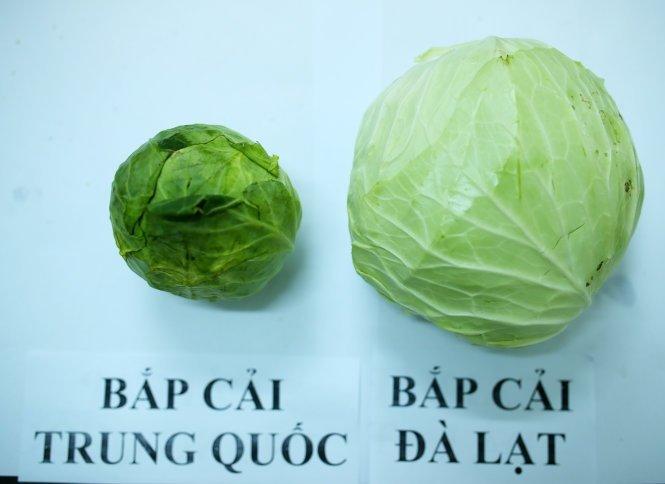 Người bán rau củ không bao hé răng cho bạn biết: 3 giây để phân biệt hàng Việt Nam - Trung Quốc-7