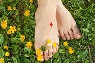 Nếu tín hiệu này xuất hiện trên bàn chân, cho thấy tim đang bị bệnh