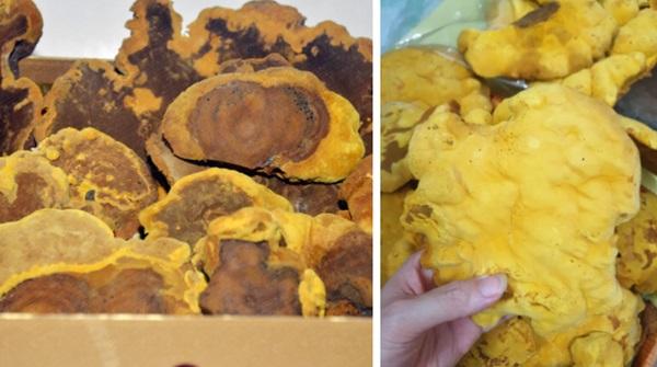 5 mặt hàng ở Việt Nam được ví như vàng đen, món thứ hai còn xuất khẩu số lượng lớn ra nước ngoài-1