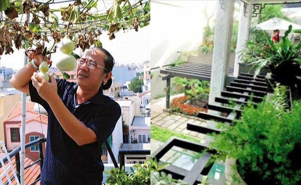 Thăm khu vườn hàng chục loại hoa và rau sạch của nghệ sĩ gạo cội Trung Dân-1