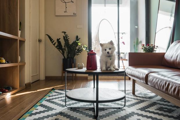 Chi 250 triệu sửa căn hộ để về chung 1 nhà, cặp vợ chồng ghi điểm tuyệt đối với style trẻ trung, hiện đại-5