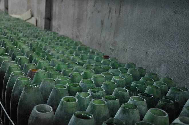 Nuôi loại cá tí hon trong chai phế liệu, lão nông Hà Nội thu về hàng trăm triệu đồng-2