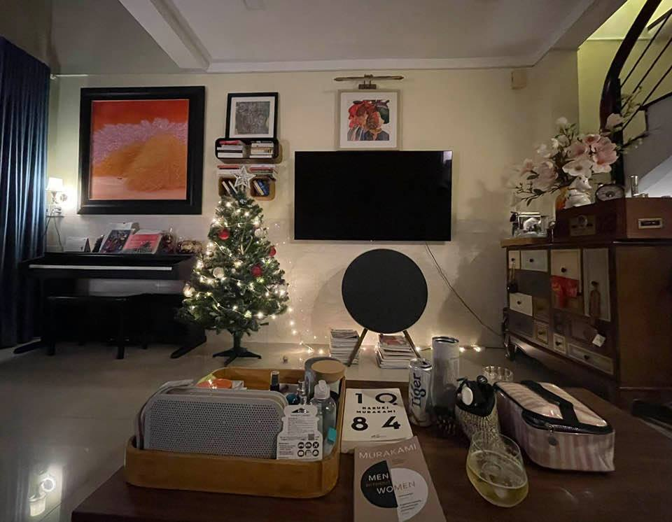 Uyên Linh khoe nhà tối giản toàn tranh với mèo bình yên vô cùng-2