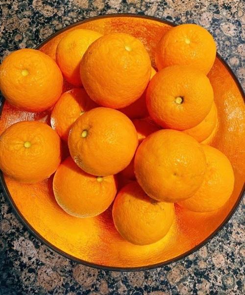 Khám phá khu vườn hàng chục loại trái cây của hoa hậu Phạm Hương ở Mỹ-16
